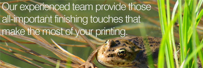 Our experienced team provide those all-important finishing touches that make the most of your printing.